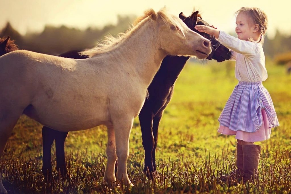 Αγαπώ τα Ζώα – Σέβομαι το Περιβάλλον